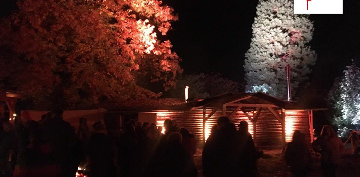Bild von beleuchteten Bäumen